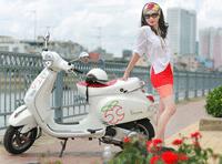 Tem phản quang giá rẻ tại Hà Nội
